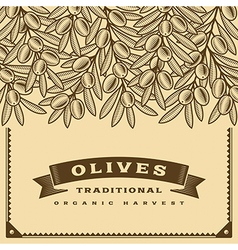 Retro olive harvest card brown vector image