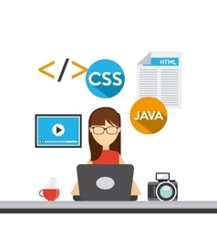 Software developer and programmer vector