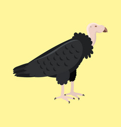 Andean condor animal largest flying bird in vector