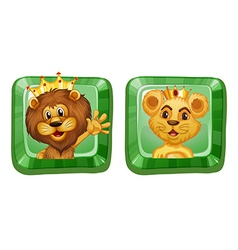 Lion and lioness on square badges vector