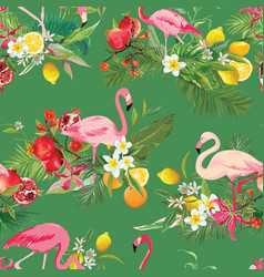 Tropical fruits flowers and flamingo background vector