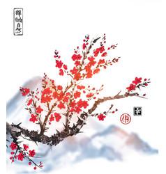 oriental sakura cherry tree in blossom on white vector image vector image