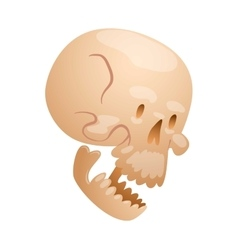 Skull face isolated on white vector