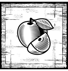 Retro apple black and white vector image