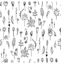 Seamless pattern with floral seedsblack and white vector
