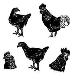 chicken siluet2 vector image vector image
