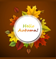 Hello autumn card with colorful leaves vector
