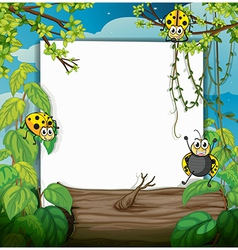 Ladybugs and a white board vector image