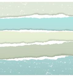 Torn grunge paper vector image vector image