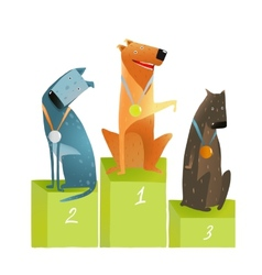 Three winners dogs sitting on podium with medals vector