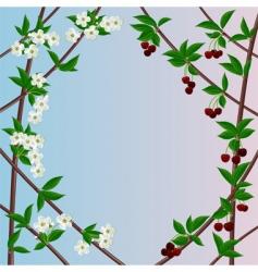 cherry framework vector image vector image