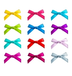 Ribbon bows vector