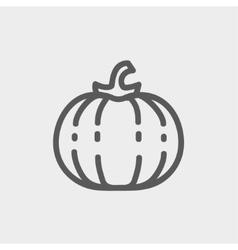 Squash thin line icon vector