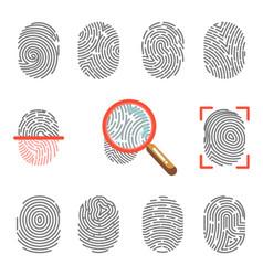 fingerprints or fingertip print identification vector image