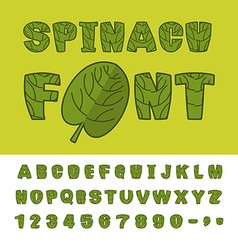 Spinach font useful herbs alphabet green lettuce vector