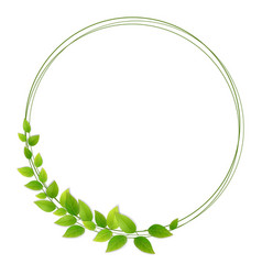 wreath of fresh green leaves vector image vector image