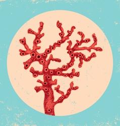 Coral vintage vector