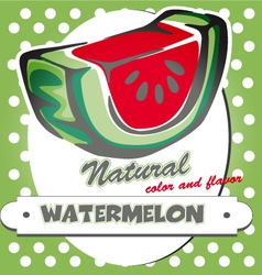 Watermelon poster vector