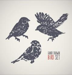 Ink hand drawn bird set vector image