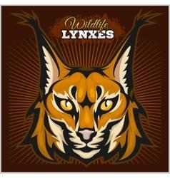 Lynx mascot logo head of lynxes vector