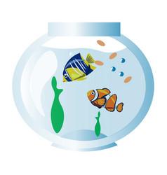 fishes in aquarium vector image