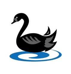 Emblem with black swan vector