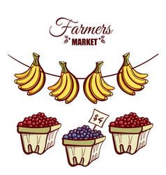 farmers market bananas berries vector image