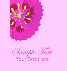 Greeting leaflet with purple viola flower in vector