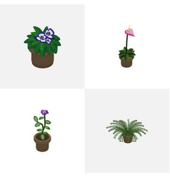 Isometric flower set of grower flower flowerpot vector