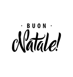 Merry christmas calligraphy template in italian vector