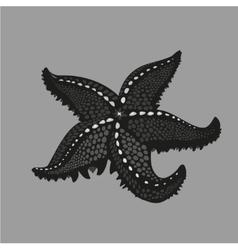 Black starfish on isolated background tattoo vector
