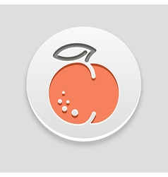 Peach icon fruit vector