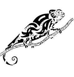 Hiqh quality chamelion drawn in original style for vector image