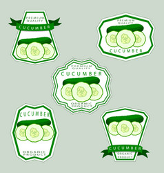 The theme cucumber vector