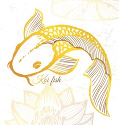Ink hand drawn golden koi fish vector image