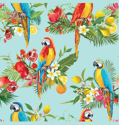 tropical fruits flowers and parrot background vector image