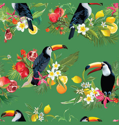 Tropical fruits flowers and toucan background vector