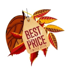 Best special price label limited offer vector