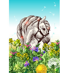horse with flowers vector image vector image