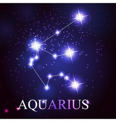The aquarius zodiac sign vector
