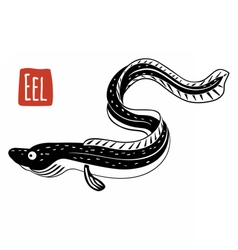 Eel black and white vector image