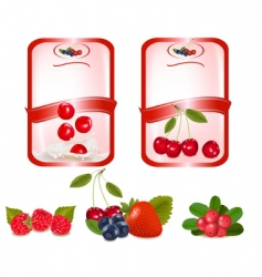 Two labels with cherries vector
