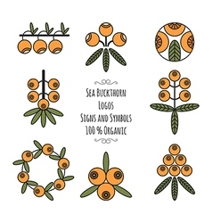 Set of the sea buckthorn logos signs and symbols vector