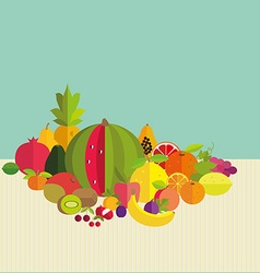 Composition of fresh fruit vector image vector image