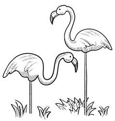 lawn flamingo outline - photo #18