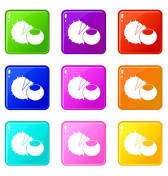hazelnuts icons 9 set vector image