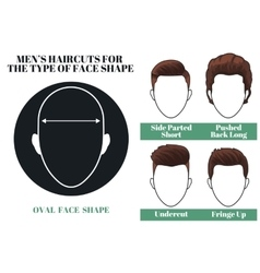 oval face shape vector image