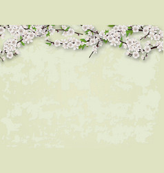 flowering branches tree and stucco wall background vector image vector image