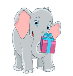 baby elephant with a gift vector image