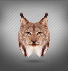Abstract triangle polygonal lynx abstract vector